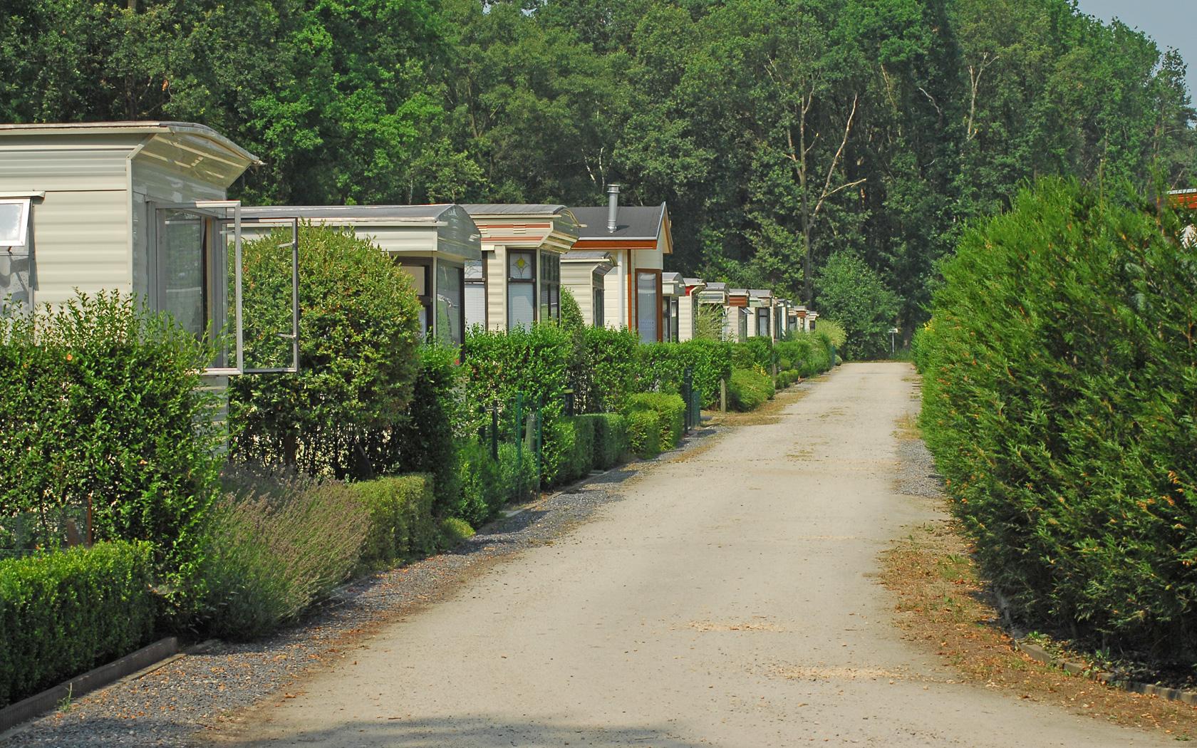 Camping-Heultje-in-Westerlo_DSC_0896_L