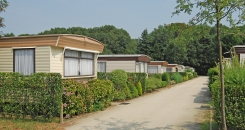 Camping-Heultje-in-Westerlo_DSC_0929_L